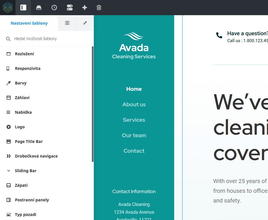 WordPress šablóna Avada - recenzia - Fusion Theme nastavenia
